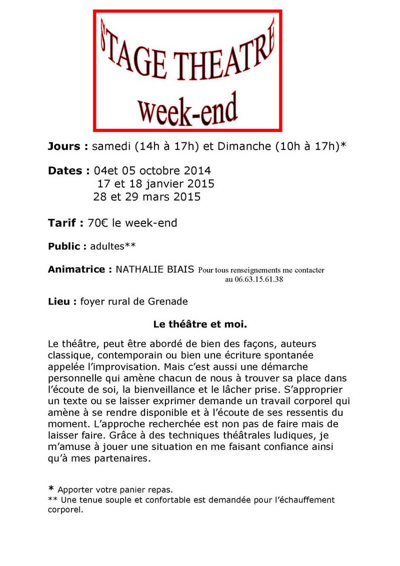 stage théatre adultes weekend 2014-2015